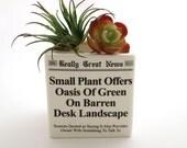 Funny planter - square planter - gift for co worker - office secret santa - gifts under 10 - funny headline