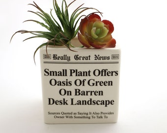 planter, square planter, ceramic planter, funny gift, desktop gardening, gift for co worker, office gift, newspaper parody