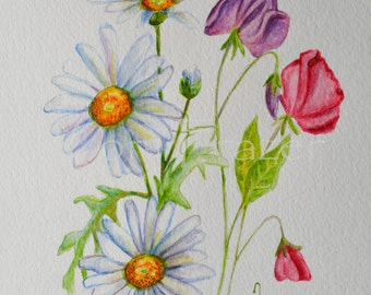 April birthday flower, Daisy and Sweet Pea flowers, original watercolor painting, birth month flower, April birthday gift
