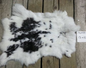 One Rabbit Hide as Shown. Lot No. 170425-M
