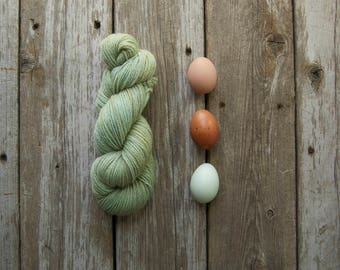 Hand Dyed Yarn, Wool Yarn, Yarn, Wool, Worsted Weight, 100% Wool Yarn, Knitting, Crochet, Kettle Dyed, Tonal, Indie Dyed, Mint Green, Olive