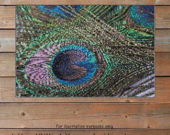 Peacock Feather Crochet Chart -  Graph Crochet - Photo Blanket - Corner to Corner - C2C - Written Line Counts - Cross Stitch