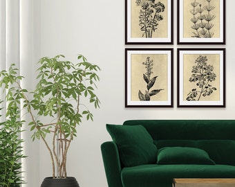 Wild Field Flower  (Series B2 - A) Set of 4 - Art Prints (Featured in Washed Linen and Black) Botanical Flower Art Prints