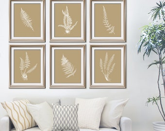 Ferns Garden Botanical Prints (Series J) Set of 6 - Art Prints (Featured in white on Latte) AS featured in BHG