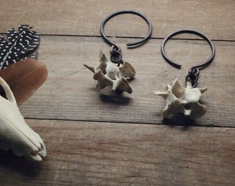 Trickster // Scavenger - 10 gauge earrings, large gauge