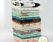 Hello, Bear - 20 Fat Quarter Bundle by Bonnie Christine for Art Gallery