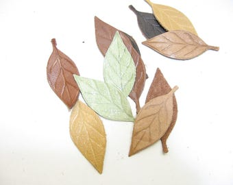 Leather Die Cut Leaf Shapes with Veins in Various Colors (12 pieces) Lot 11 Autumn Leaves, Fall Foliage, Leaf Lot