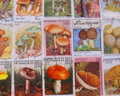 Mushroom Mania 50 Premium Vintage Modern Postage Stamps Toadstools Fungus Horticulture Fungi Spore Mycology Morel Woodland Topical Philately