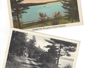 STURGEON POINT Postcards Set of 2 Vintage Postcards Unused Ontario Canada Scenic Post Card Lakeview Inn Kawartha Lakes Fenelon Falls