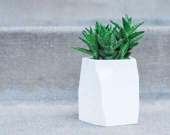 SUCCULENT PLANTER POT    Cactus Planter - Air Plant Holder - Geometric Planter - Modern Planter - Indoor Planter - Planter - Desk Planter