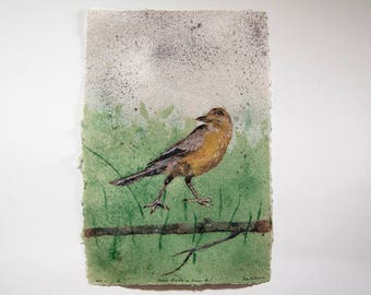 Female Grackle on Grass No. 1 – pulp painting on handmade abaca/cotton/daylily paper (2017), Item No. 255.01