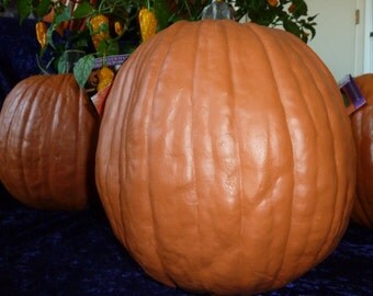 """Artificial Pumpkin 12"""" tall & 34"""" Round very real looking"""