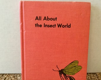 All About the Insect World, by Ferdinand C. Lane, illustrated by Matthew Kalmenoff, 1954 - vintage children's book