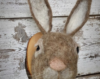 Sweet needle felted rabbit mount by feltfactory -READY TO SHIP