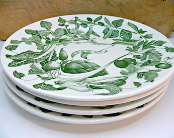 La Primula S.R.L. Ceramica Quadrifoglio Dinner Plates - Set of 4 10-inch Vintage Dinner Ware - Green & White