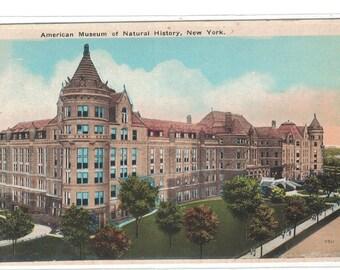"New York, Vintage Postcard, ""American Museum of Natural History, New York,""  1920, #1065."