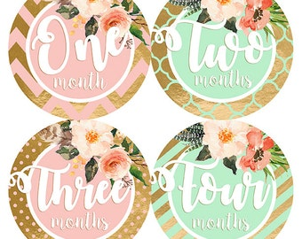 FREE GIFT, Baby Girl Monthly Stickers, Mint, Blush Pink, Gold, Month Stickers, Bodysuit Stickers, Photo Prop, Tribal Flowers, Nursery Decor