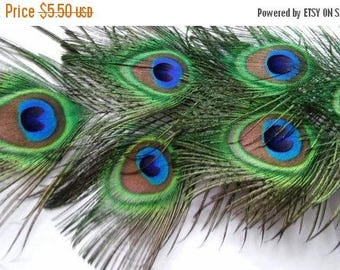 ON SALE at Etsy Peacock Feathers,Seven All Seeing Eye Feathers,Eyes Measure 3x3.5 in,18in in Length,Weddings,Prom.Shower,Center Pieces,Corsa