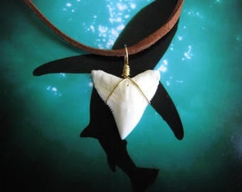 "Shark Tooth Necklace, Modern day Bull Shark tooth, Suede leather cord 20"", Brass wire wrapped"