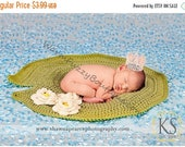 SALE 20% OFF Instant Download PDF Crochet Pattern - No. 36 Baby Frog Lily Pad Photo Prop Mat Blanket