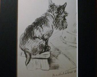 SALE Scottish terrier dog Vintage mounted 1936 Lucy Dawson Janet Scottie terrier dog plate/print Unique gift