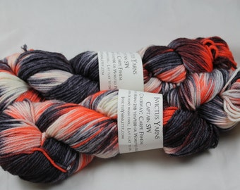Carpe Fishem Captain SW 100% superwash merino worsted yarn