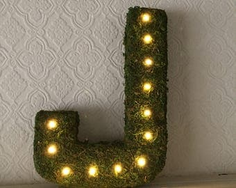 Moss Letters With Lights