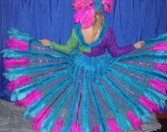 Mardi Gras Costume size 12-14