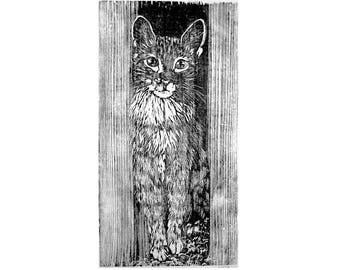 Life size Cat Print, Printmaking , Handpulled Woodblock Tabby Cat Art