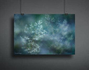 Surreal Nature Photography, Grass Photograph, Blue Wall Art Print, Winter Wall Decor Print, Christmas Wall Decor