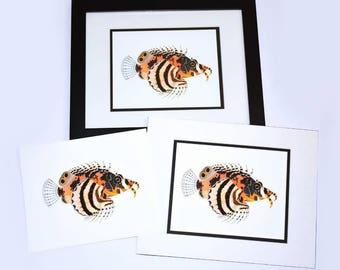 Fu Manchu Lionfish (Matted Print)