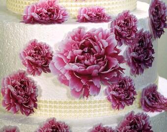 Wedding Cake Toppers, Edible Flower Cake Decorations, Pink Edible Peonies, Set of 24 DIY Cake Decor, Pink Edible Cake Decorations, Baby