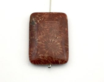 1 fossil coral stone bead/ 25mm x 35mm/ puffed rectangle #PP049