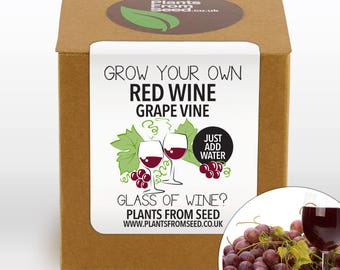 Grow Your Own Red Grape Vine Kit