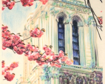 Original, one-off drawing of some flowers before Notre Dame Cathedral in Paris, in charcoal and pastel on calico