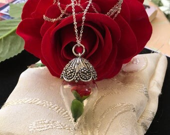 The Beauty and The Beast Inspired Necklace Mini Enchanted Red Rose Vial Pendant