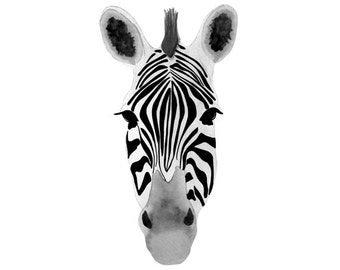 Zebra Watercolor and Ink Print (FREE U.S. Shipping)