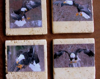 Tile, eagle, flight, raptor, bird of prey, coasters, stone,