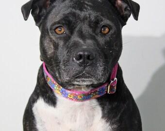 Spring Flower Dog Collar / Pink Dog Collar / Handmade Dog Collar