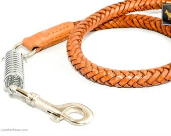 Leather Paws Statement II Braided Leather Leash