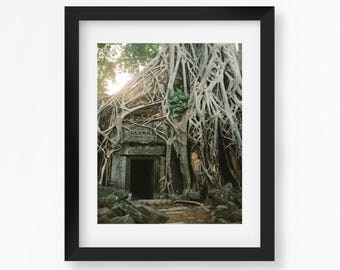 Ta Prohm Temple photo print, Angkor Wat, Cambodia