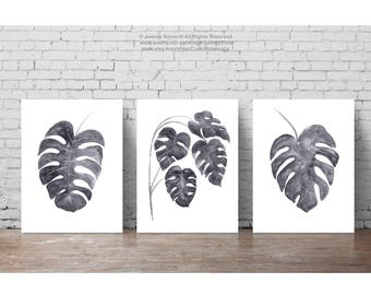 Monstera Leaves Illustration Gray Leaf Drawing set 3 Art Prints, Tropical Palm Painting Watercolor Print, Charcoal Botanical Room Wall Decor