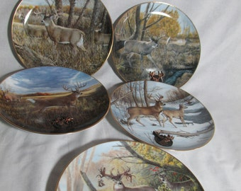 Whitetail deer collector plates, Wild Wings The legends-World Record Whitetails series lot of 5