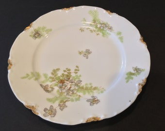 Dinner Plates: These dinner plates are Haviland Limoges Schleiger No. 52H