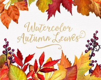 Watercolor Autumn Leaves & Branches Clipart - Watercolor Clipart, Fall Clipart, Fall Leaves, Autumn Clipart, Thanksgiving Clipart