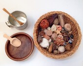 Reggio Emilia Sensory Natural Loose Parts~Montessori~Waldorf~Educational Play~Fine Motor~Basket Vintage Tin Measuring Cup and Bowl included