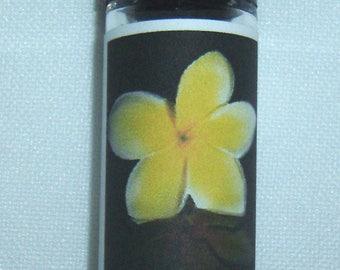 Hawaiian White Ginger Perfume Oil
