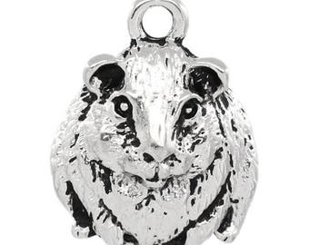 8 Guinea Pig Pet Animal Antique Silver Charms 14mm x 18mm (951)