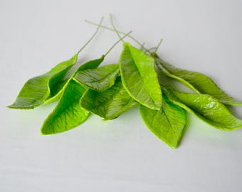 Assorted Spring Green Sugar Leaves