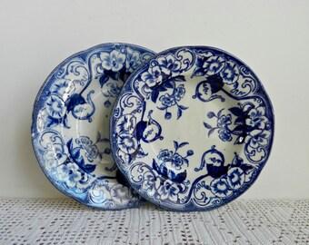Creil et Montereau Mondèle Flora Ensemble de deux assiettes à soupe